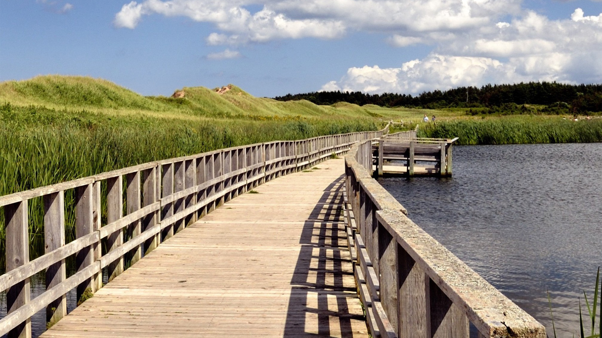 boardwalk stretching over the water alongside grassy fields