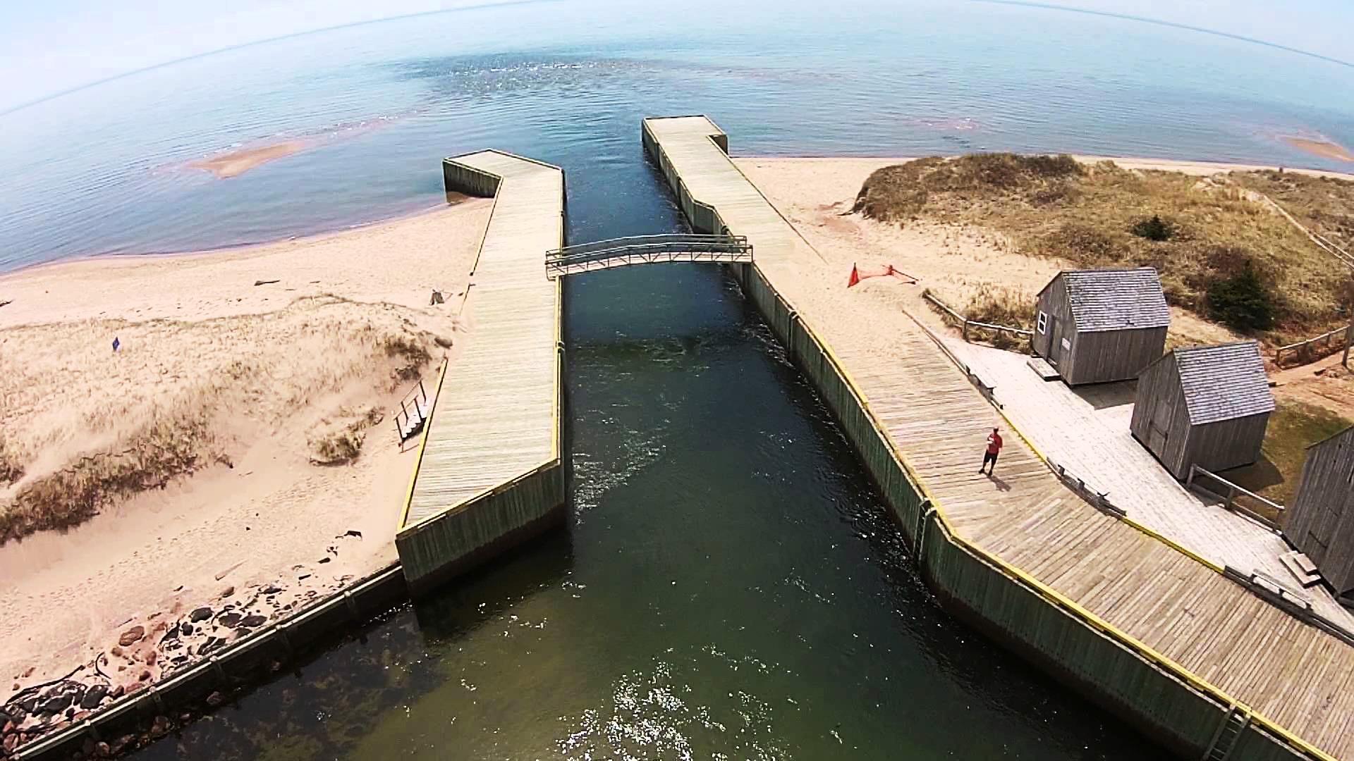 birds eye view of basin head boardwalk along shoreline with bridge