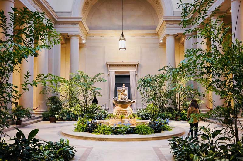 interior courtyard with lots of greenery at the national gallery of art